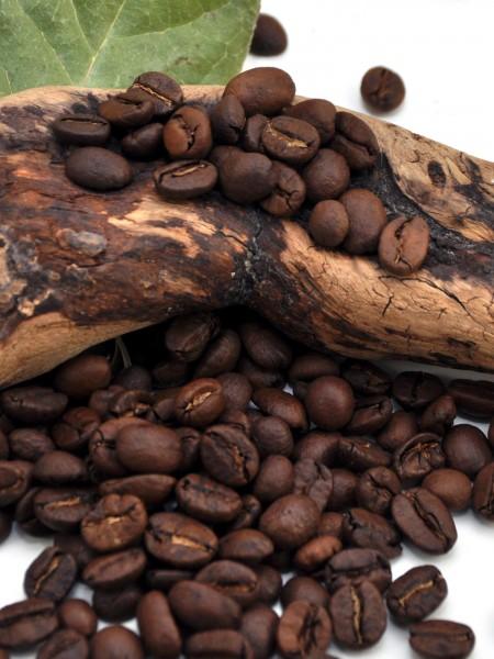 Bio-Kaffee-Espresso