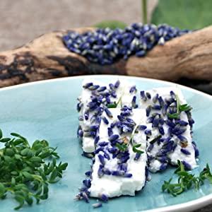 schafskaese-mit-lavendelblueten
